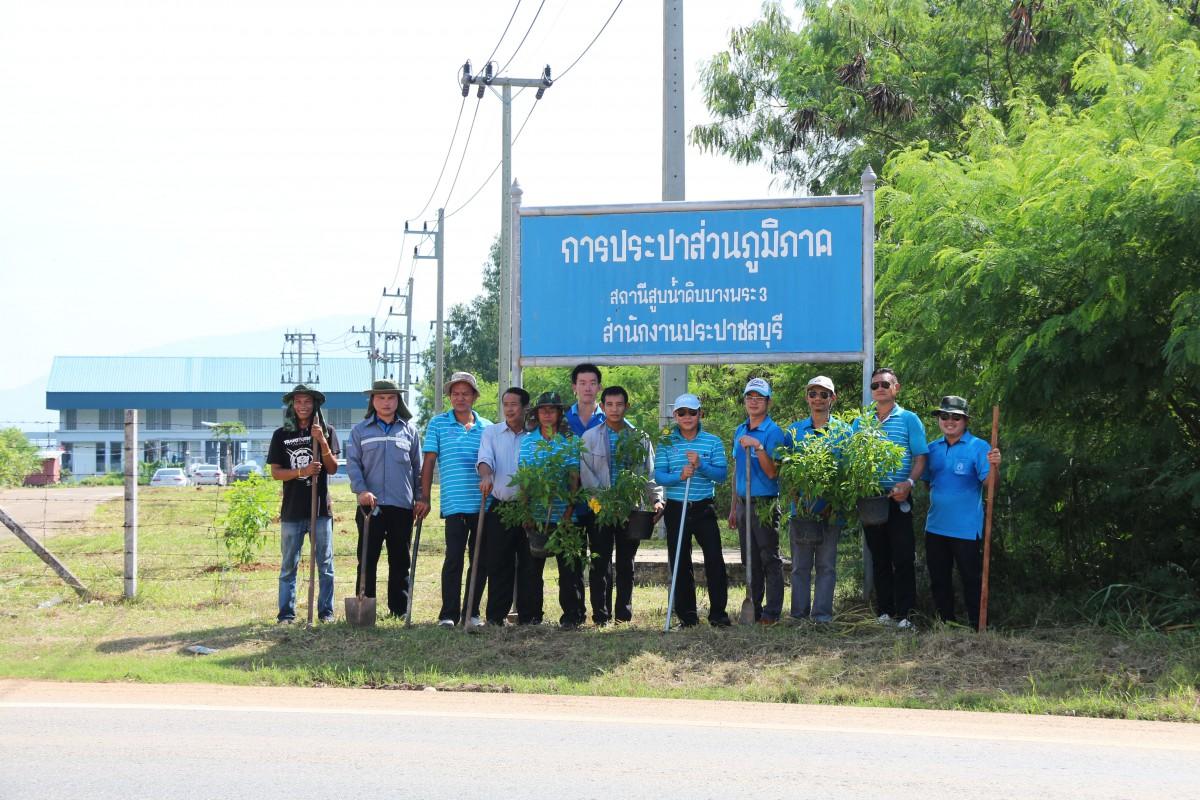 กปภ.สาขาชลบุรี (พ) จัดกิจกรรมปลูกต้นไม้ปรับปรุงภูมิทัศน์ ณ สถานีสูบน้ำดิบบางพระ 3
