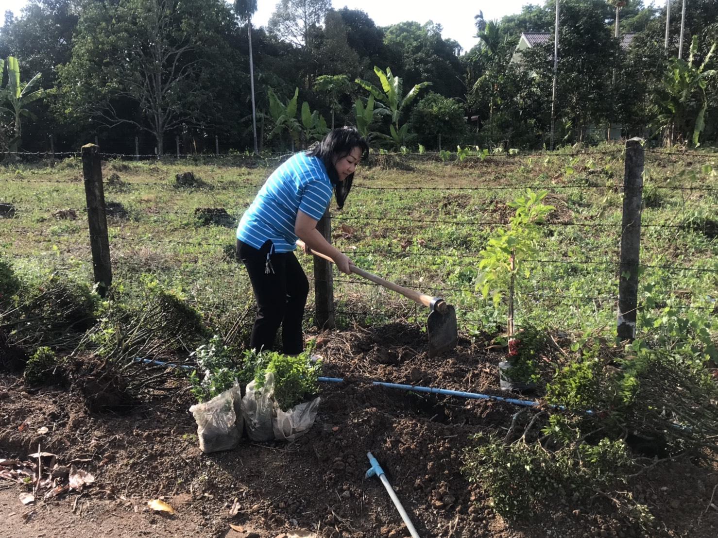 กปภ.สาขาขลุง จัดกิจกรรมปลูกต้นไม้